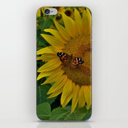 A Thirsty Butterfly iPhone Skin
