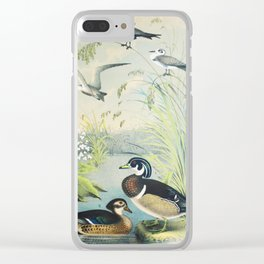 Plate VIII Ornithology Birds Vintage Studies Duck, Tern American Bird Clear iPhone Case