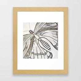 Butterfly fly away.  Framed Art Print