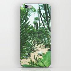 Moroccan Gardens iPhone & iPod Skin