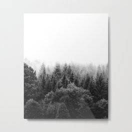 Forest Foggy Metal Print
