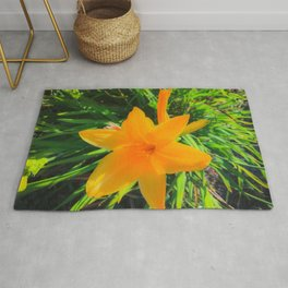 closeup yellow flower with green leaves background Rug