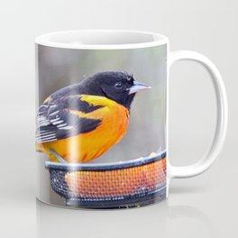 Oranges for the Oriole Coffee Mug