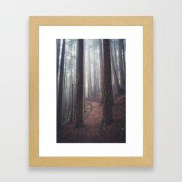 Foggy Forest Path Framed Art Print