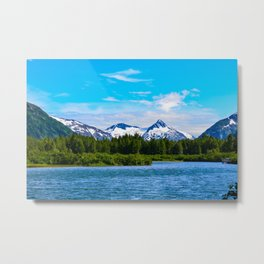 Portage Valley Summer - I Metal Print