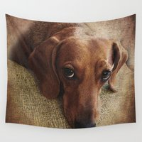 dachshund Wall Tapestries featuring Dachshund by Tennessee Backroads
