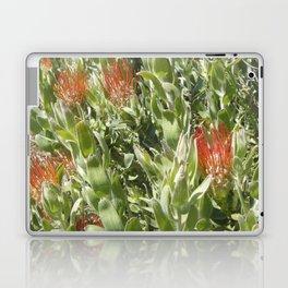Proteas Laptop & iPad Skin