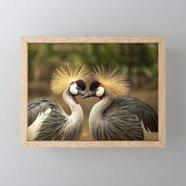 Grey Crowned Crane Framed Mini Art Print
