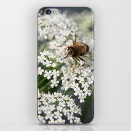 Yummie 02 (Iphone) iPhone Skin