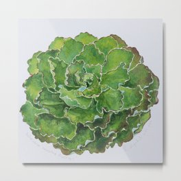 lovely Succulent Plants No.8 Metal Print