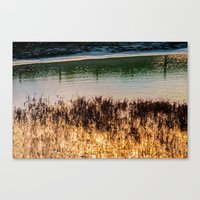 Canvas Prints featuring POND LIGHT by Catspaws
