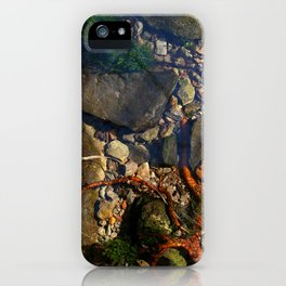 Creeping Fingers iPhone Case