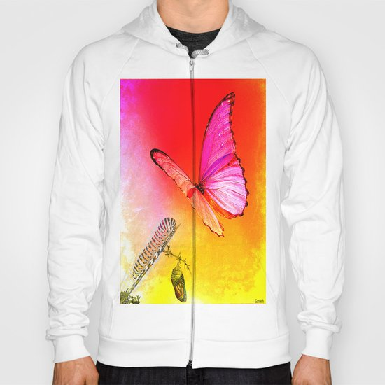 The butterfly, the caterpillar and the chrysalis Hoody