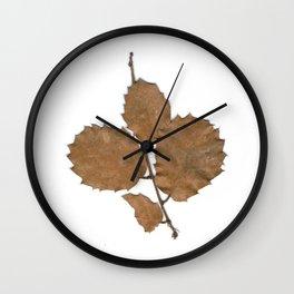 Quercus leaves Wall Clock