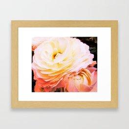 petite grenouille Framed Art Print
