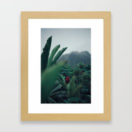Drops Of Rain Framed Art Print