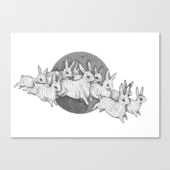 Leporidae Canvas Print