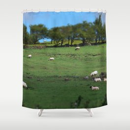 Field of Irish Sheep Shower Curtain