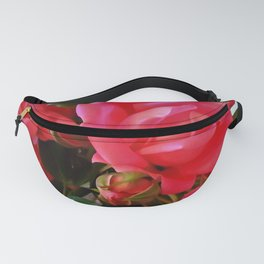 Pink Roses WC 2 Fanny Pack