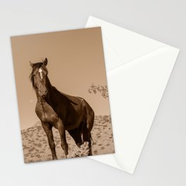 Wild_Horses Sepia 3501 - Nevada Stationery Cards