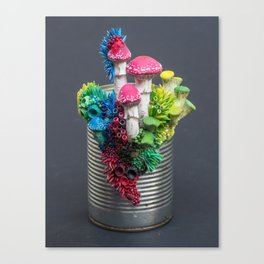 Taking Sides, Mushrooms and Plants on Tin Can Canvas Print