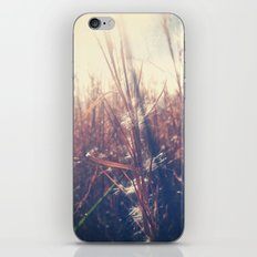 Clothed In Beauty.  iPhone Skin