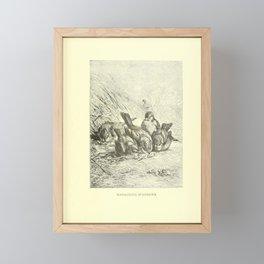 Vintage Print - Animate Creation (1898) - Finches Framed Mini Art Print