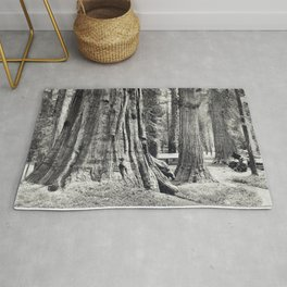 Big Trees of California Southern Pacific Rug