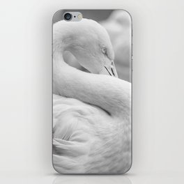 Mad Flamingo (Black and White) iPhone Skin