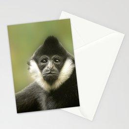 Colobus Monkey Stationery Cards