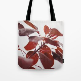 Red leaves in a London Fog by Diana Eastman Tote Bag