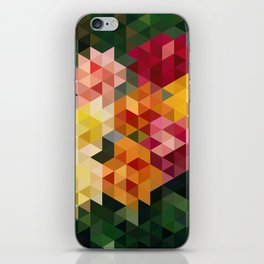 Chrysanthemums 1 iPhone Skin