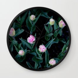 Pale pink tulips bloom. Nature photography. Pastel. Perspective: from above. Floral art. Keukenhof. Wall Clock