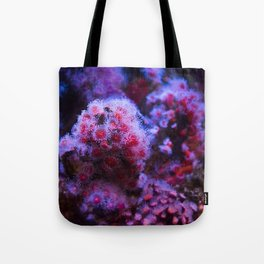 Under the Sea Blooming Magenta Coral Reef Sea anemone Underwater Photography Colored Lustre Print Tote Bag