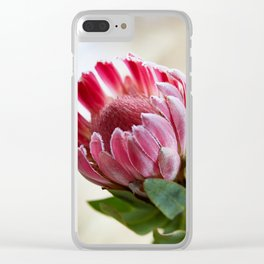 pink protea Clear iPhone Case