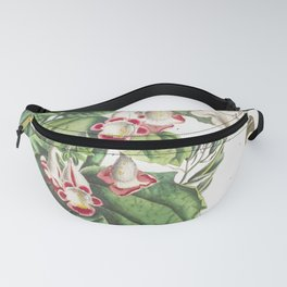 Plantae et Papiliones rariores Martynia or Cats claw (1748) by Georg Dionysius Ehret Fanny Pack