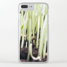 sprouts of wheat Clear iPhone Case