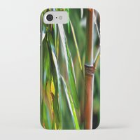 mother iPhone & iPod Cases featuring Mother by Robin Curtiss
