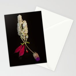 Triduo Stationery Cards