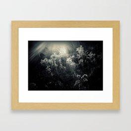 Broken backyard Framed Art Print