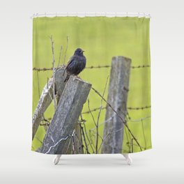 Starling bird on a fence Shower Curtain