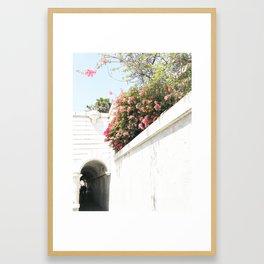 santa barbara spring scene Framed Art Print