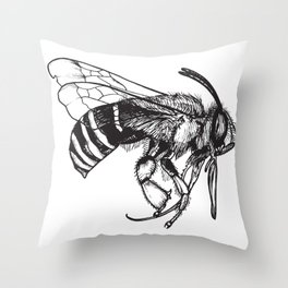 Anthophora Affabilis - Native Bee Throw Pillow