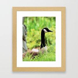 Keep Watch Framed Art Print