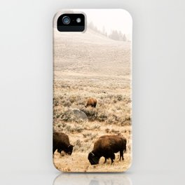 A Snow Storm Blowing In iPhone Case