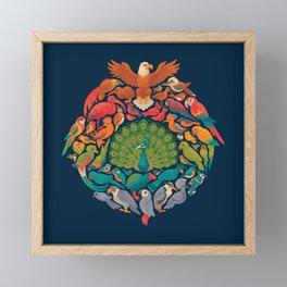 Aerial Rainbow Framed Mini Art Print