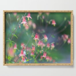 Red Columbine - Wildflower Photograph Serving Tray