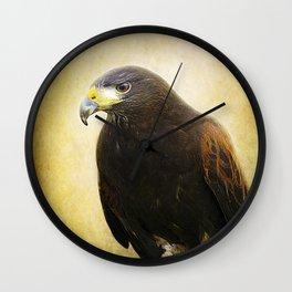 A Harris Hawk Wall Clock
