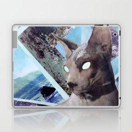 Nude Cat Laptop & iPad Skin
