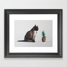 cat and pineapple Framed Art Print